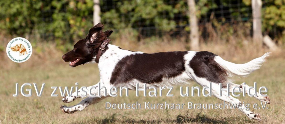 JGV zwischen Harz und Heide